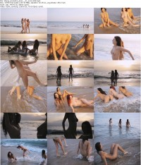 Пляжные сучки